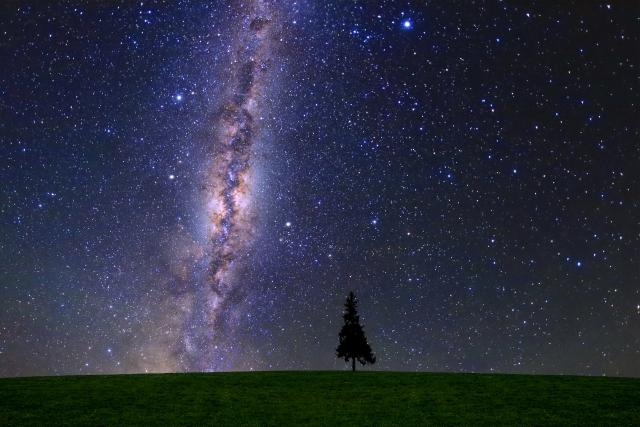 綺麗な星空と草原。宇宙と地球って感じがして好きです。